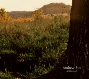 andrew bird-noble beast